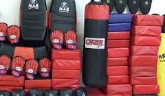 Экипировка для боксеров от ведущих производителей